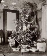 The Yule tree